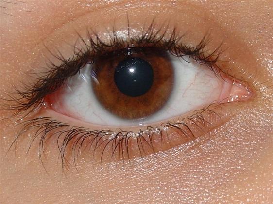 ärr i ögat