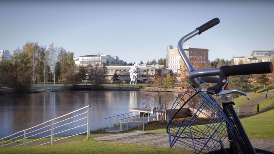 Film: Master's Programme in IT Management at Umeå University, Sweden
