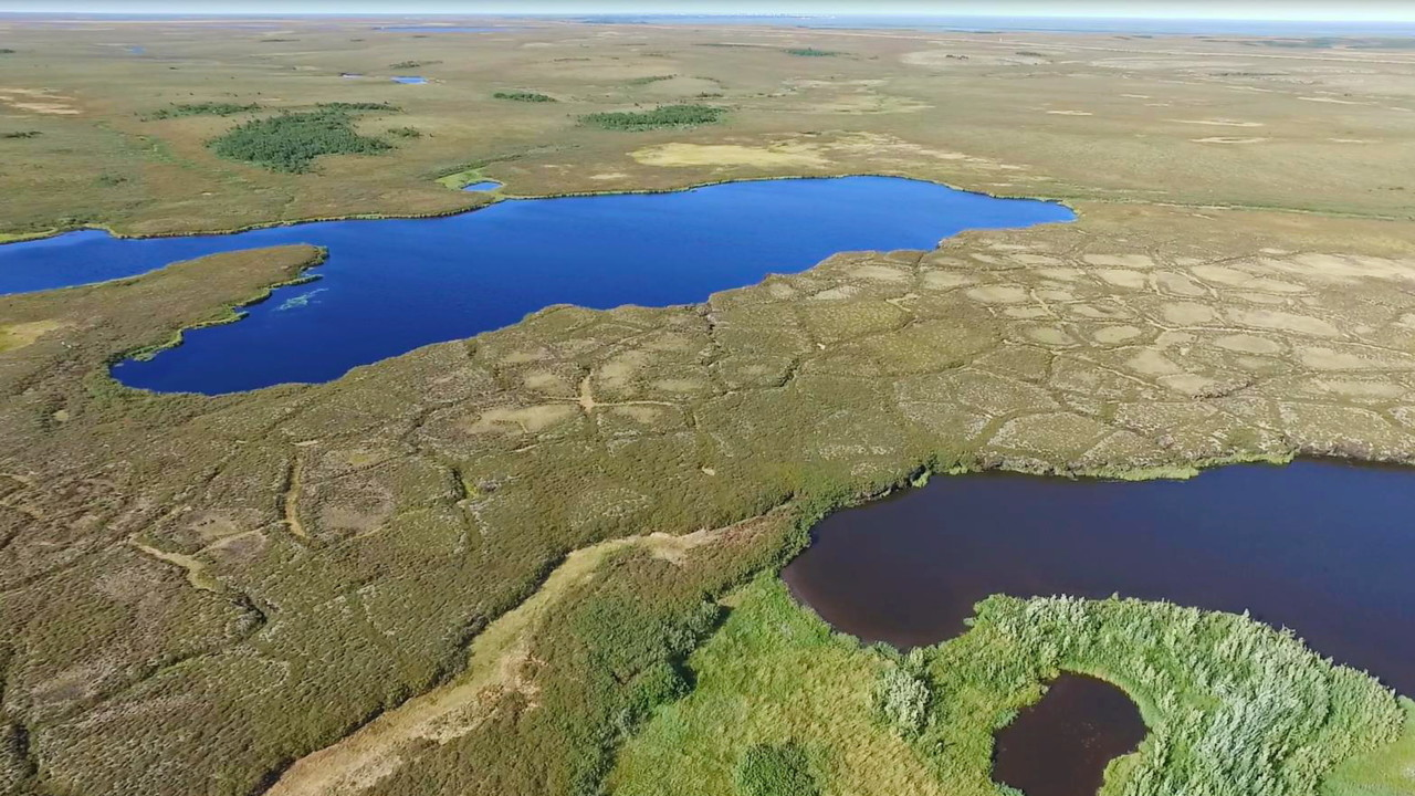 High Greenhouse gas emissions from Western Siberian lakes