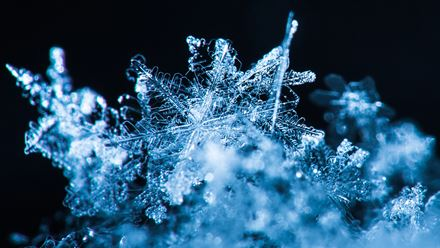 Close-up shot of snowflakes.