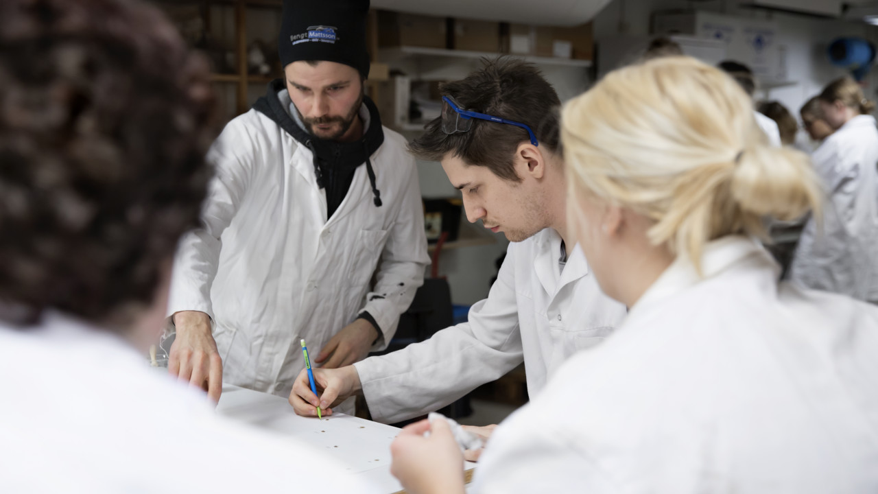 Students of Archaeology doing laboratory work in white lab coats