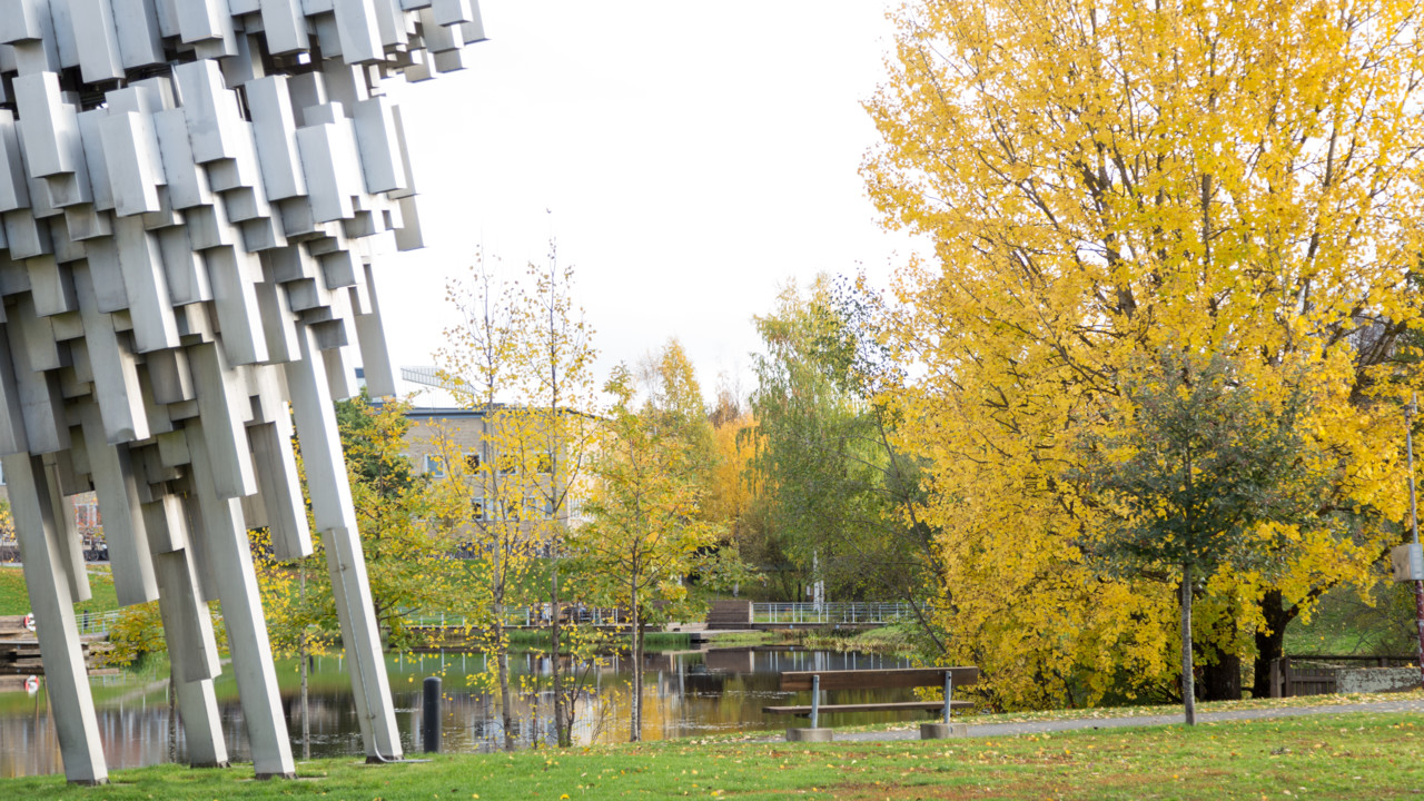 Picture of Umeå University campus during autumn