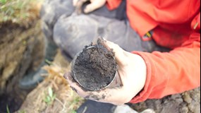 A better understanding of how soil carbon is distributed in the Arctic