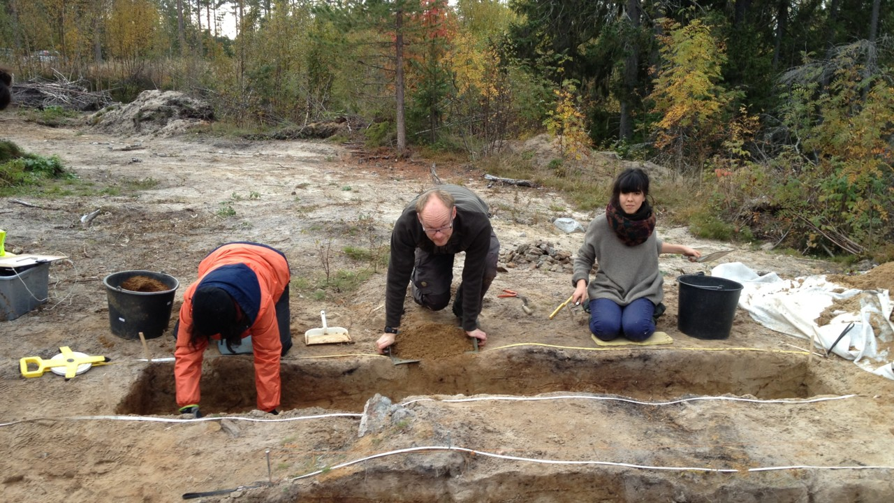 Archaeology and Environmental Archaeology