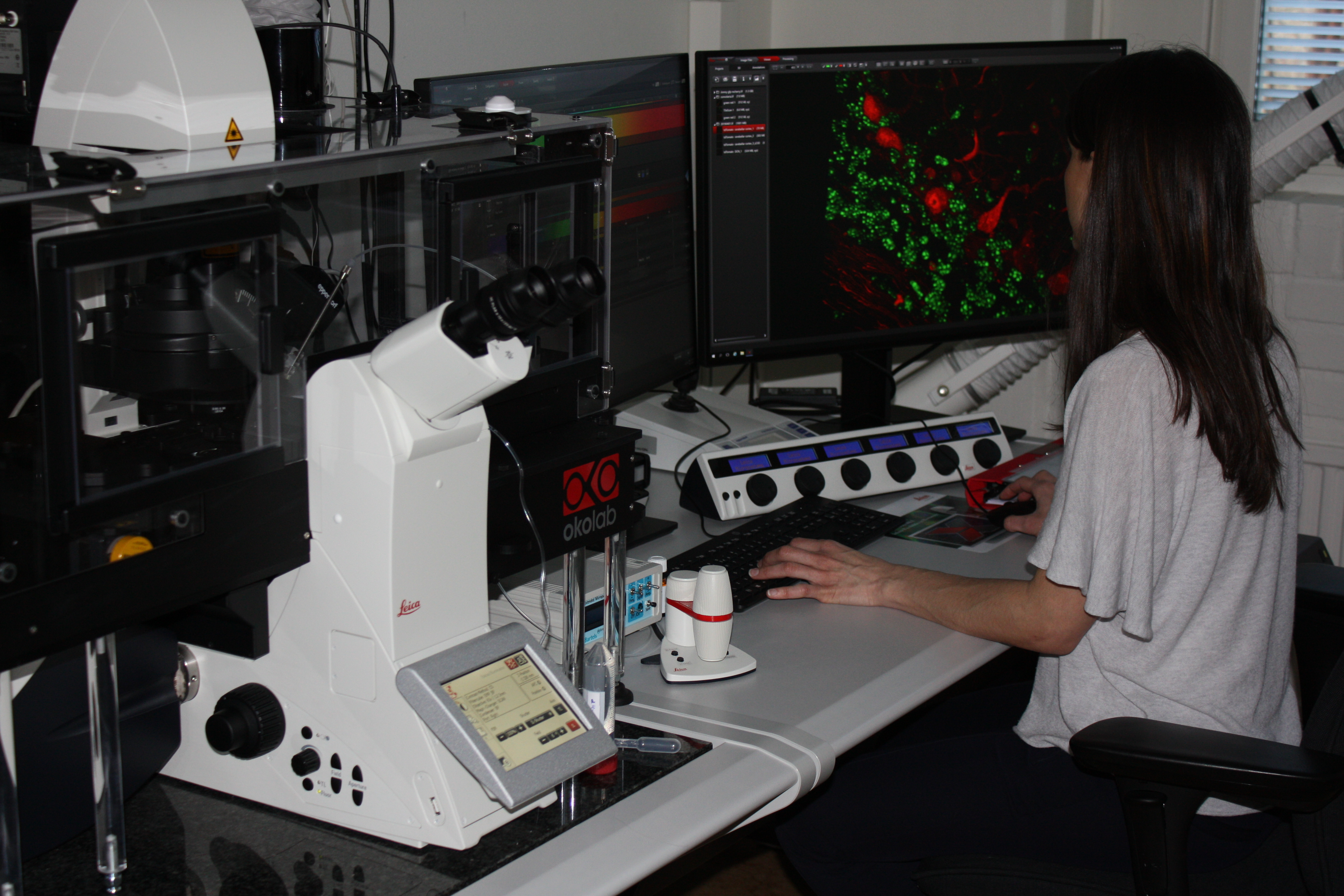 Light Microscopy Instruments and Workstations