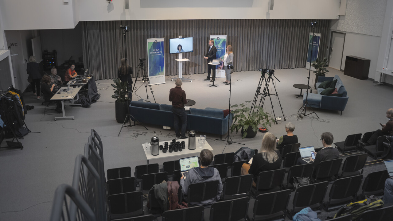 The press conference was held through Zoom from Umeå University. Around 60 journalists participated, both national and international.