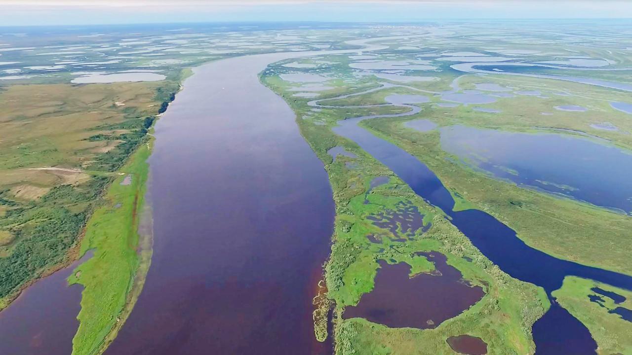 Área do Permafrost e paisagem de rio na Sibéria ocidental
